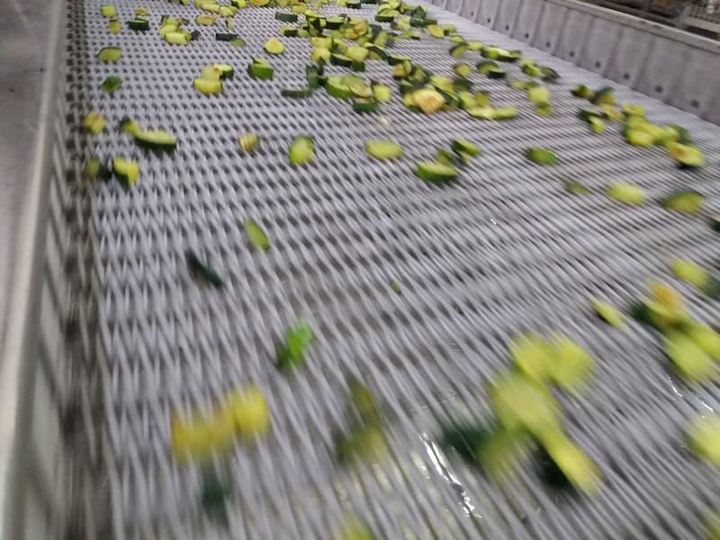 lavorazione di zucchine, gias
