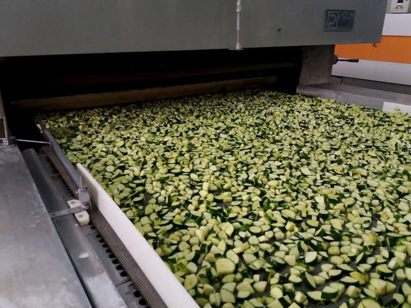 lavorazione zucchine, gias